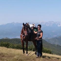 mlo trekking a cavallo